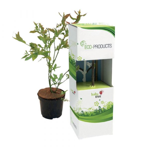 A standard box including a baby tree (available in apple, pear, cherry, plum and blueberry), measuring approx. 35cm and weighing approx. 350 grams. Full colour branding is to one side of the tag, per unit.