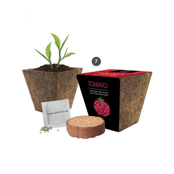 Fully customised, wrap round biodegradable wood fibre pot, coir pellet, seed sachet with a choice of flower, vegetable, herb or tree seeds.