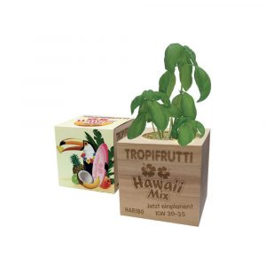 100% compostable and biodegradable made from alder wood and can be printed or laser etched. Bio sleeve and paper sticker can be personalised. Price includes laser branding to one side of the cube plus full colour sleeve standard seeds.