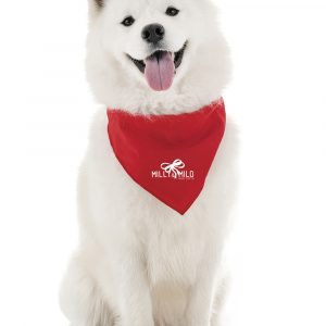 Square satin cloth pet bandana with stitched edges. A fashionable promo item ideal for vets, dog walking services or doggy day care. Available in Pantone colours to match your brand.